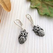 Earrings handmade. Livemaster - original item Owls earrings for woman amulet guard. Handmade.