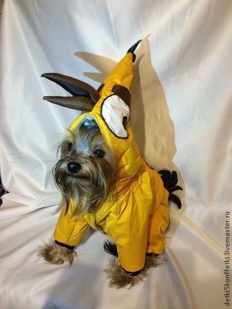 Одежда для собак, ручной работы. Ярмарка Мастеров - ручная работа. Купить ANGRY BIRDS -Чак-зимний комбинезон для Вашего любимца. Handmade.