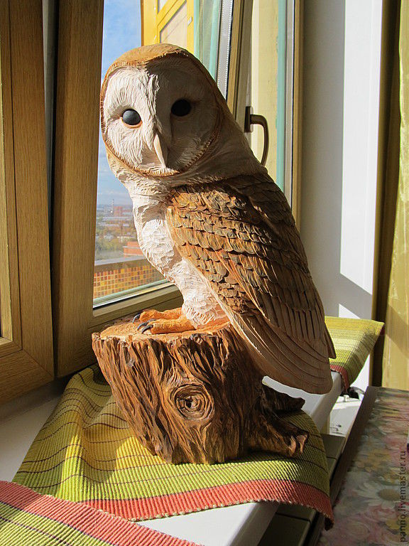 Сипухи : фото птицы