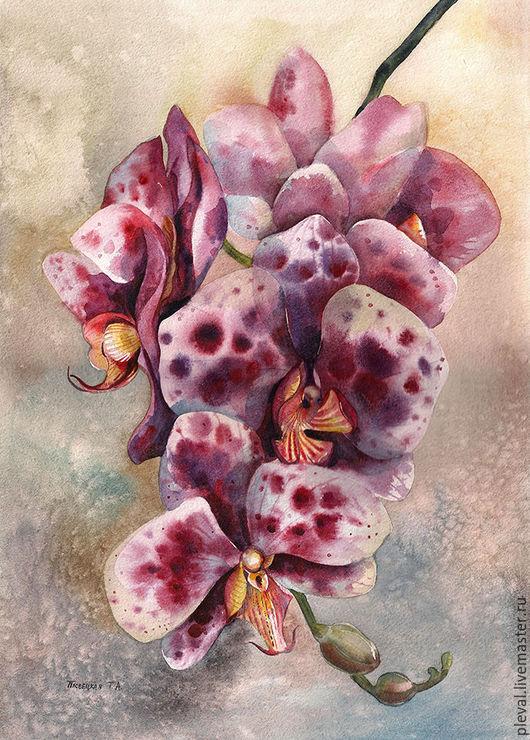 Картины цветов ручной работы. Ярмарка Мастеров - ручная работа. Купить Акварели с орхидеями, серия из 4 работ. Handmade. Коричневый