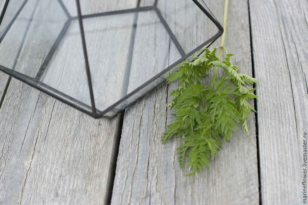 Флорариум подвесной. Пирамида
