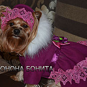 """Для домашних животных, ручной работы. Ярмарка Мастеров - ручная работа Комбинезон-пальто """"Ягода Черничка"""". Handmade."""