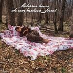 Мелиссин Домик (Melissinhome) - Ярмарка Мастеров - ручная работа, handmade