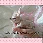 Куклы и игрушки ручной работы. Ярмарка Мастеров - ручная работа Собачка чихуахуа. Handmade.