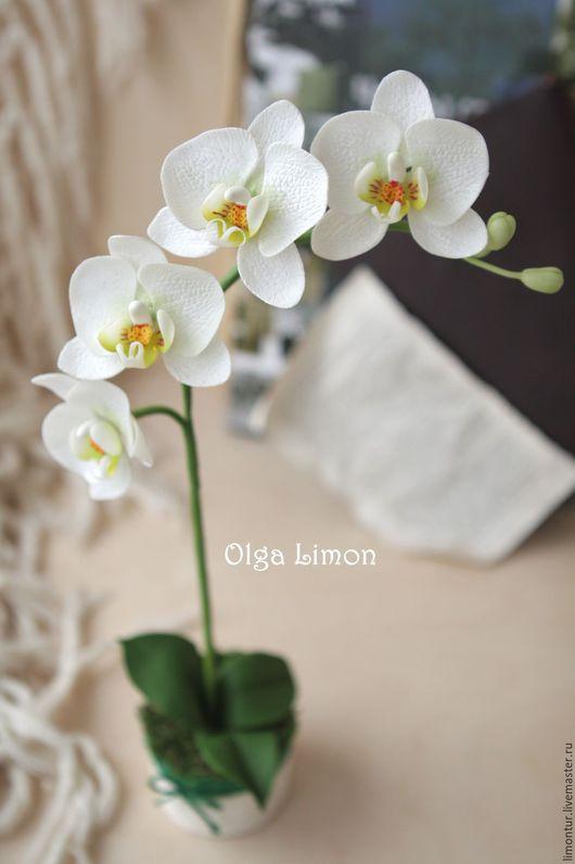Интерьерные композиции ручной работы. Ярмарка Мастеров - ручная работа. Купить Орхидея из Холодного фарфора. Handmade. Белый, цветок в горшке