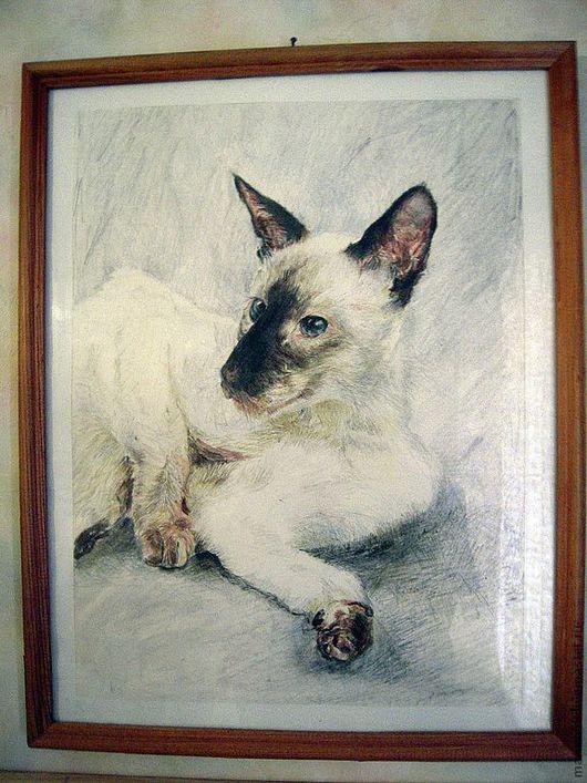 Animal Painting handmade. Livemaster - handmade. Buy Pets photography.Graphics, kitty, pastel pencils