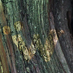 Мастерская Wombat - Ярмарка Мастеров - ручная работа, handmade