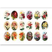 Материалы для творчества ручной работы. Ярмарка Мастеров - ручная работа Картинки для кабошонов. Handmade.