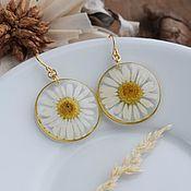 handmade. Livemaster - original item Earrings with daisies. Earrings with real flowers. Handmade.