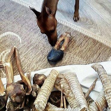 Товары для питомцев ручной работы. Ярмарка Мастеров - ручная работа Копыто оленя. Handmade.