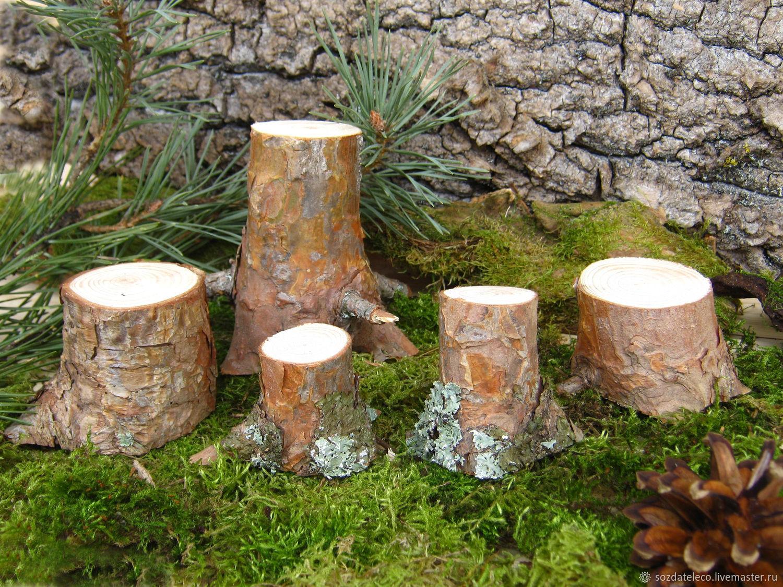пенек, природные материалы для творчества, для флористики, лесной стиль, спилы дерева, лесной пенек, спил сосны, для детских поделок, пенек сосновый, пенек для декора, пенек заготовка, для композиции