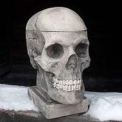 handmade. Livemaster - original item Skull box. Handmade.