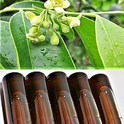 Агаровое дерево (уд) - натуральное эфирное масло