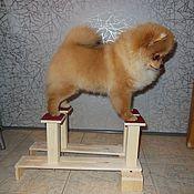 Зоотовары handmade. Livemaster - original item Size S. The simulator for testing the exhibition stand the dog.. Handmade.