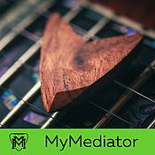 Музыкальные инструменты handmade. Livemaster - original item The pick of wood, Bubinga True V. Handmade.