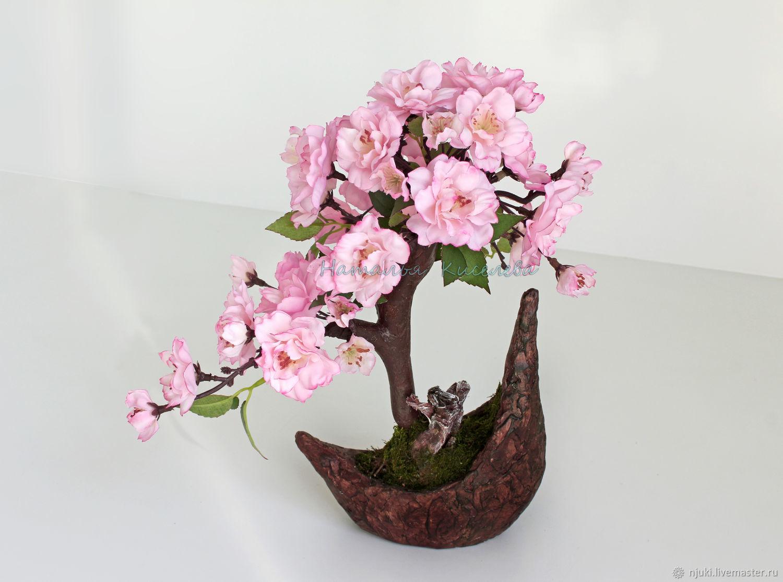 Бонсай Цветущая Сакура 30 см, Бонсай, Голицыно,  Фото №1