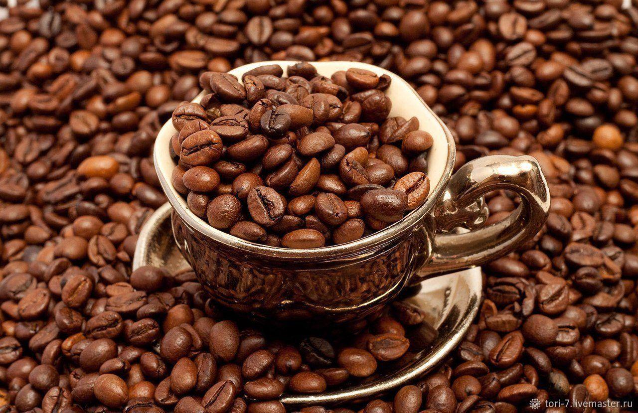 Диагностика на кофейной гуще, Оракул, Шымкент,  Фото №1