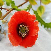 Цветы и флористика ручной работы. Ярмарка Мастеров - ручная работа Цветок из полимерной глины. Мак (холодный фарфор). Handmade.