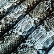 Материалы для творчества handmade. Livemaster - original item Python skin, semi-gloss finish, natural color with a blue tint. Handmade.
