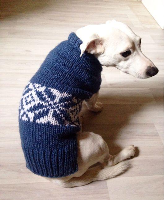 Одежда для собак, ручной работы. Ярмарка Мастеров - ручная работа. Купить Вязаный свитер для собаки средней породы. Handmade. Салатовый