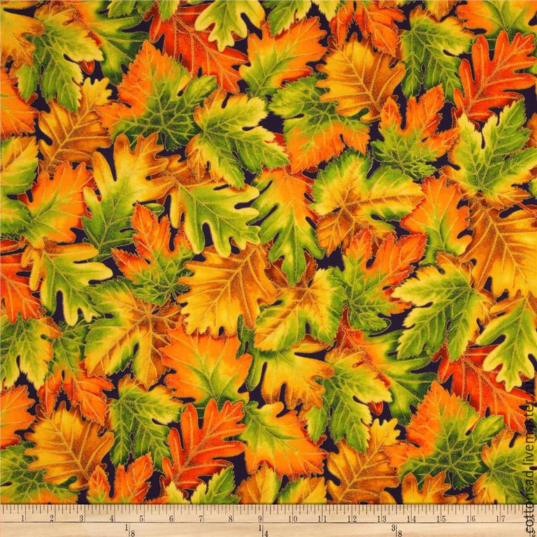 Виды осенних листьев картинки