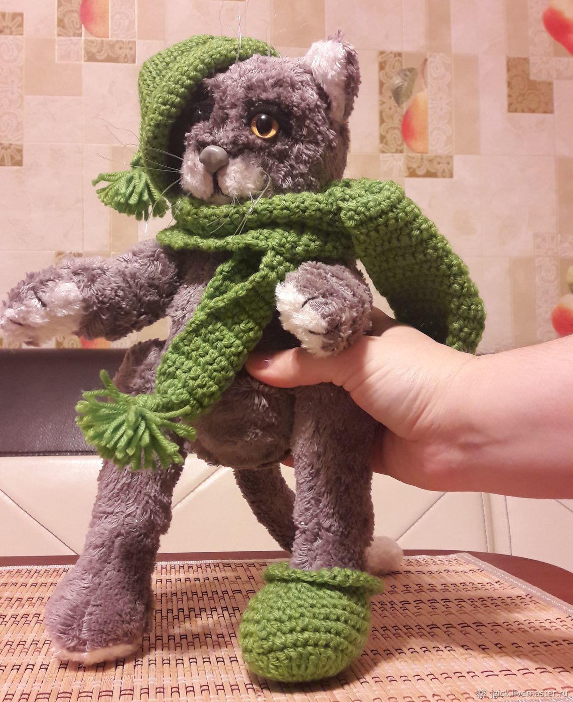 Teddy the cat ' Barsik', Teddy Toys, Omsk,  Фото №1