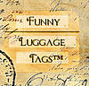 Funny Luggage Tags (funnyluggagetag) - Ярмарка Мастеров - ручная работа, handmade