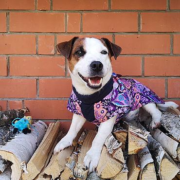 Товары для питомцев ручной работы. Ярмарка Мастеров - ручная работа Куртка для собак (попона). Handmade.
