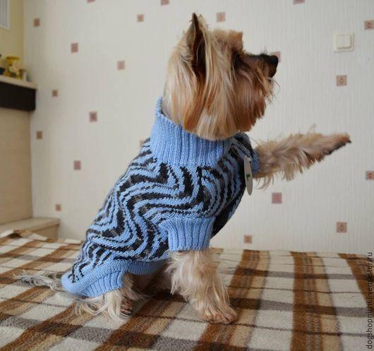 Одежда для собак, ручной работы. Ярмарка Мастеров - ручная работа. Купить Cвитер для собак Зигзаг. Handmade. Свитер для собак, жаккард