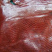 Натуральная кожа игуаны (обрезь) №3