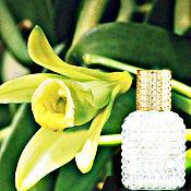 Духи ручной работы. Ярмарка Мастеров - ручная работа Vanilla Extasy. Очень стойкий парфюм ручной работы. Handmade.