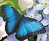 Александра (Nitysh) Цветы Украшения - Ярмарка Мастеров - ручная работа, handmade