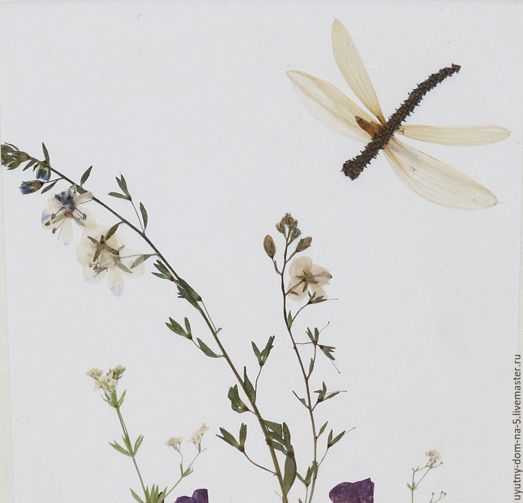 Флористическая картина `Стрекоза прилетела`, сухоцветы, полевые цветы, ручная работа.