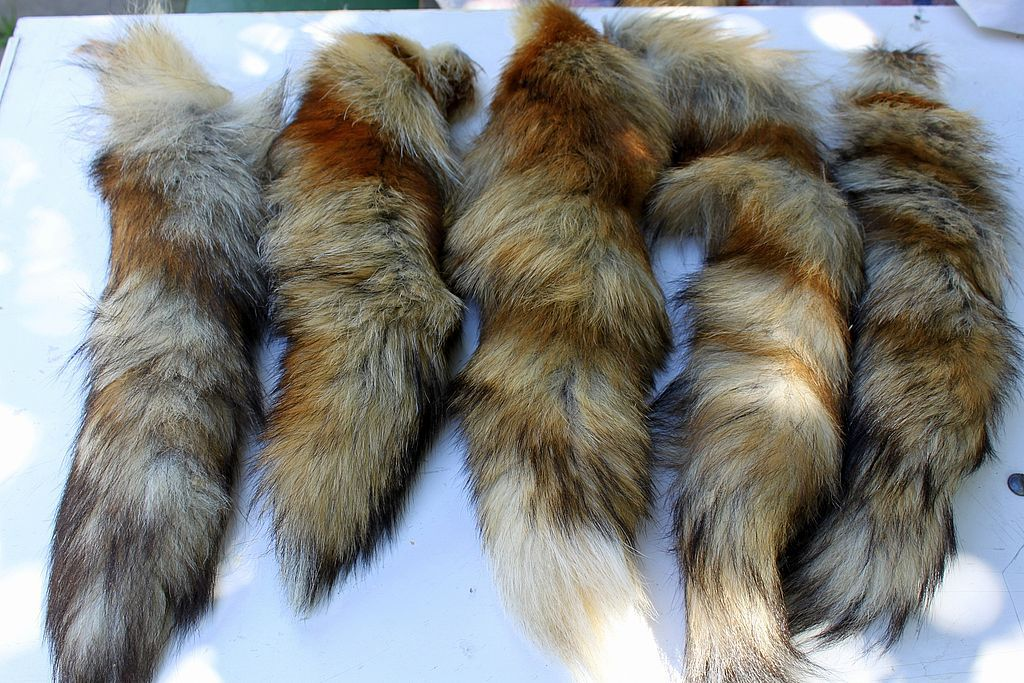 Wild fox tails, Fur, Moscow,  Фото №1