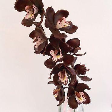 Цветы и флористика ручной работы. Ярмарка Мастеров - ручная работа Черная орхидея Керамическая флористика цветы из полимерной глины. Handmade.
