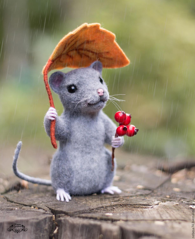 Мышь забавные картинки