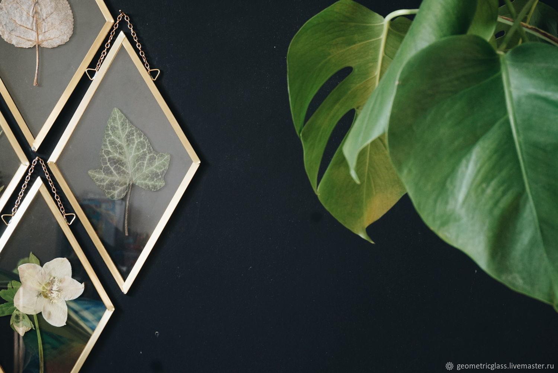 Гербарий в стекле, набор, Фитокартины, Краснодар,  Фото №1