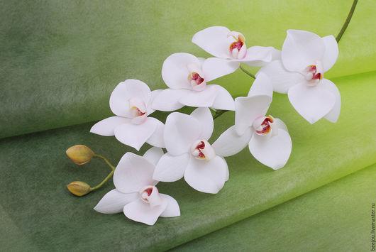 Цветы ручной работы. Ярмарка Мастеров - ручная работа. Купить Соцветие белой орхидеи Фаленопсис. Handmade. Белый, фоамиран иранский