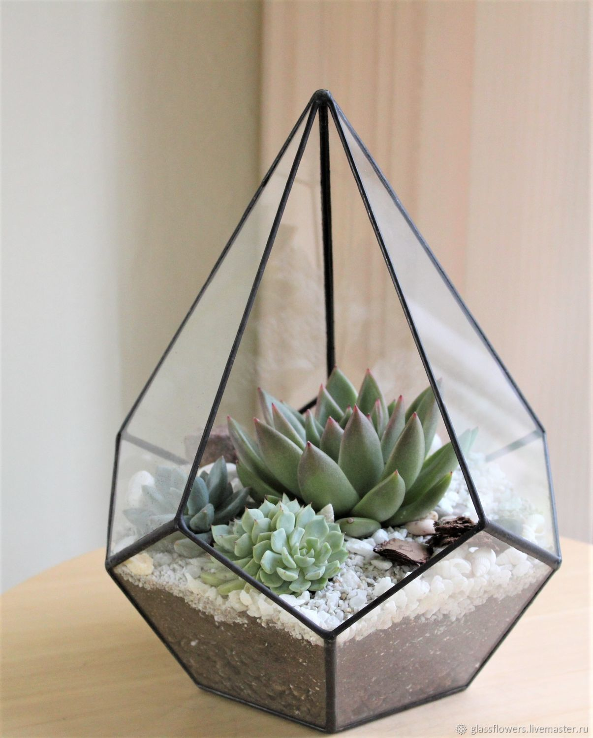 Florarium Drop with Echeveria and succulents, height 27 cm, Florariums, St. Petersburg,  Фото №1