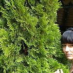Вера Севрюгина (Ярошенко) (verasevryugina) - Ярмарка Мастеров - ручная работа, handmade