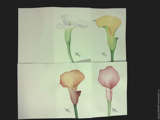 """Картины цветов ручной работы. Ярмарка Мастеров - ручная работа. Купить набор открыток """"Каллы"""". Handmade. Комбинированный"""