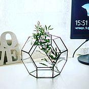 Для дома и интерьера ручной работы. Ярмарка Мастеров - ручная работа Флорариум Тиффани из прозрачного стекла для растений кактусов и декора. Handmade.