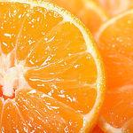 Orange Club+ - Ярмарка Мастеров - ручная работа, handmade