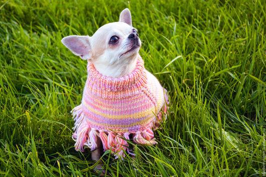 """Одежда для собак, ручной работы. Ярмарка Мастеров - ручная работа. Купить Пончо"""" Ника """". Handmade. Пончо, пончо вязаное"""