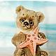 Мишки Тедди ручной работы. Ярмарка Мастеров - ручная работа. Купить Ocean Love. Мишка с морской звездочкой. Коллекционный медведь тедди.. Handmade.