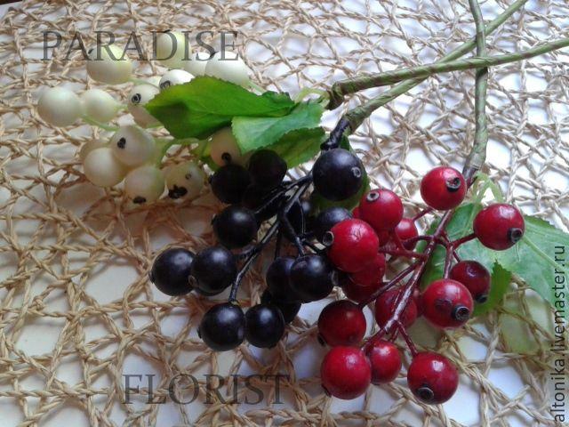 Смородина ,ветка с ягодами, Цветы, Брянск, Фото №1