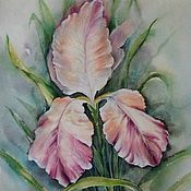 Картина. Розовый ирис.30-40