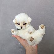 Куклы и игрушки handmade. Livemaster - original item The Puppy Bo. Handmade.