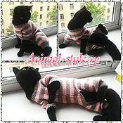 Для домашних животных, handmade. Livemaster - original item Knitted costumes for cats. Handmade.