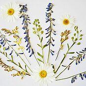Материалы для творчества handmade. Livemaster - original item A set of dried wildflowers and green twigs.Flat drying machine, ,16pcs. Handmade.